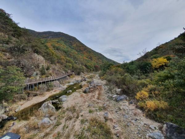 장령산자연휴양림 (2).jpg